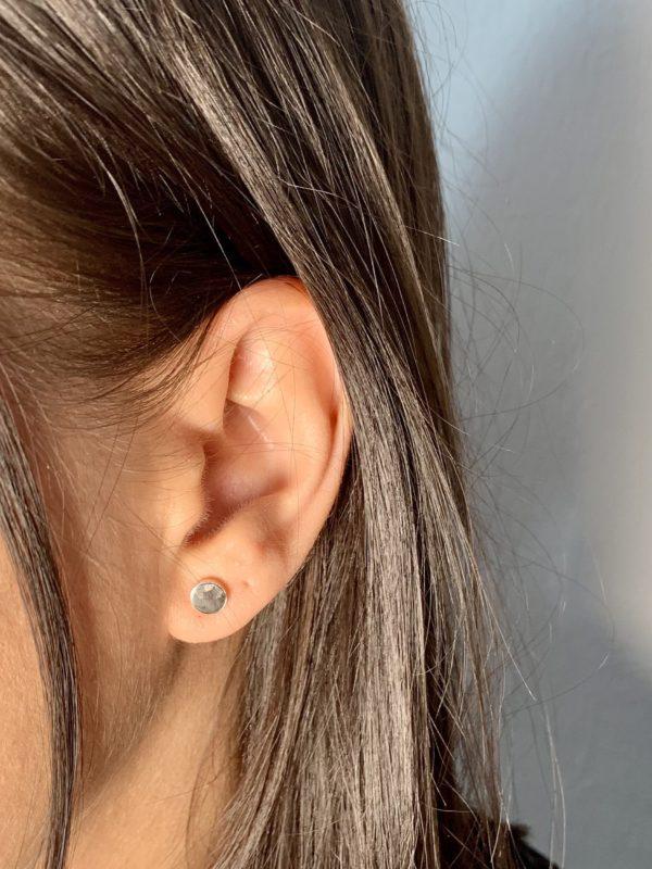 Puces d'oreille 2